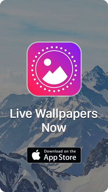 LIVE WALLPAPERS AND THEMES NOW
